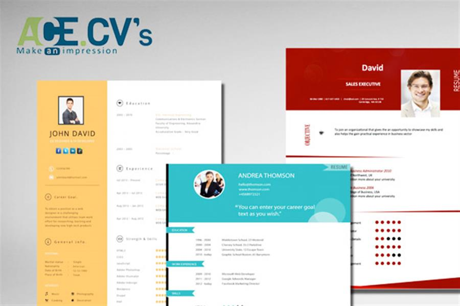 Online - Professional Resume and Cover Letter Package